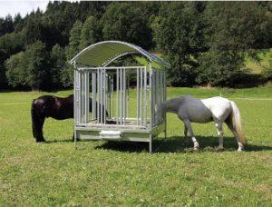 Welcher Heuraufen ist am besten für meine Pferde geeignet?